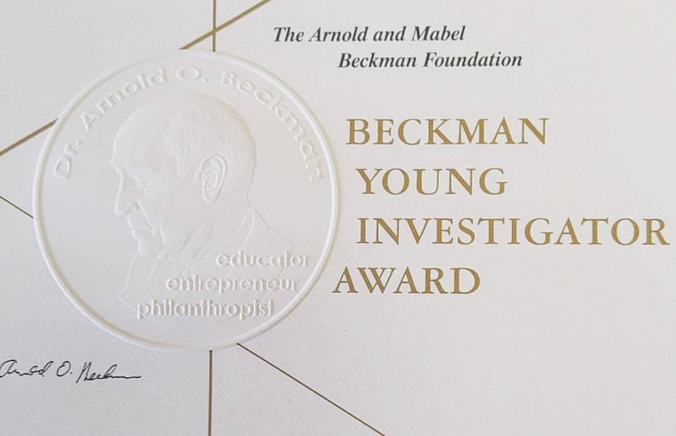 byi award certificate
